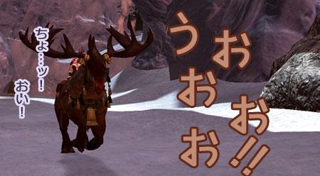 DragonsProphet-516