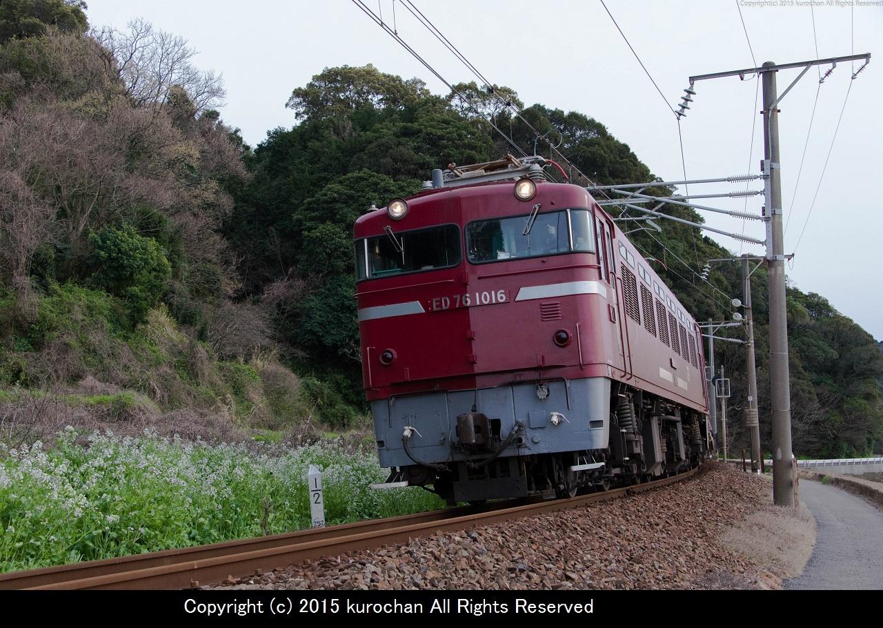 ASF_5285-2.jpg