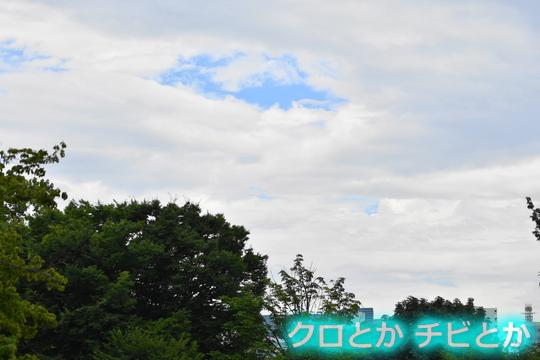 540px20150813_etc-01.jpg