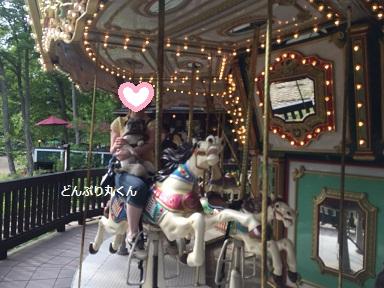 donnburi_20150615093957077.jpg
