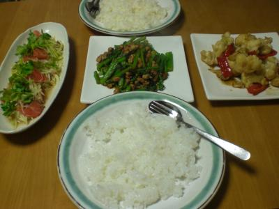 アスパラ菜と挽肉炒め・青パパイヤのサラダ他