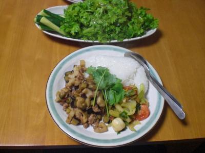 ナス・レンコン・豚挽肉の炒め物他