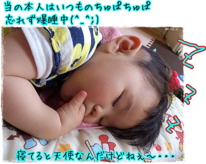 かわゆ酢ぅ~~~