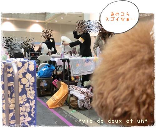 20141207blog2.jpg