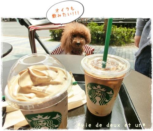 20150412blog10.jpg