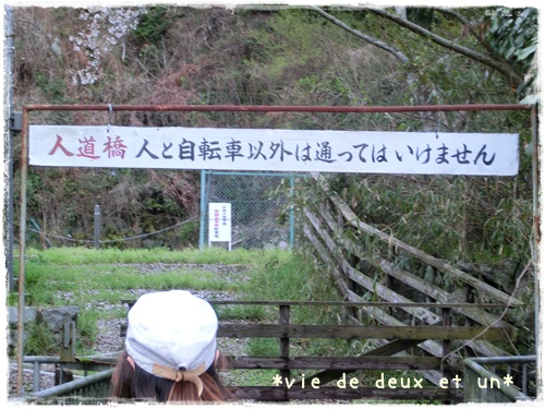 20150412blog14.jpg