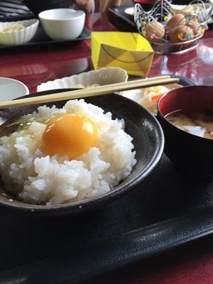 卵賭けご飯