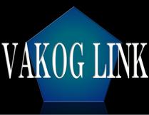 VAKOG LINK(ヴェイコッグ・リンク) 様