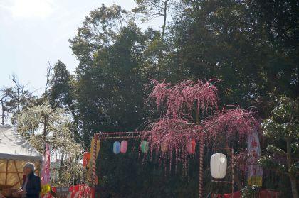 304_2梅祭