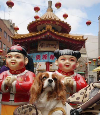 408_4南京町
