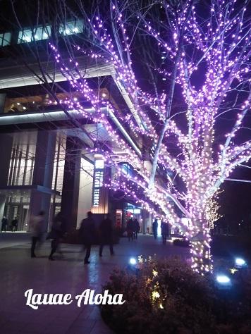 飯田橋サクラテラス