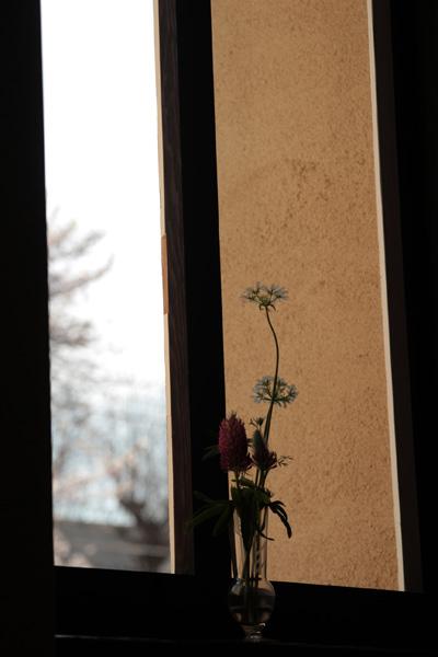 photo858.jpg