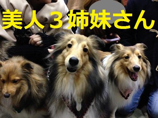 東京ビッグサイト92