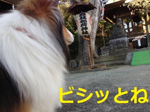 五社稲荷2