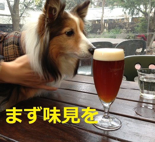 ガーデンハウスビール