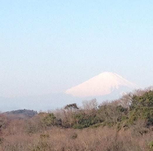 富士見台3