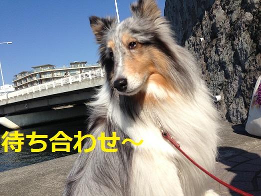 江ノ島到着2
