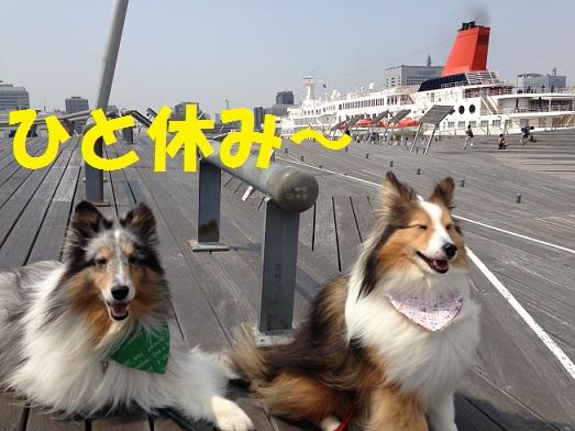 大桟橋92