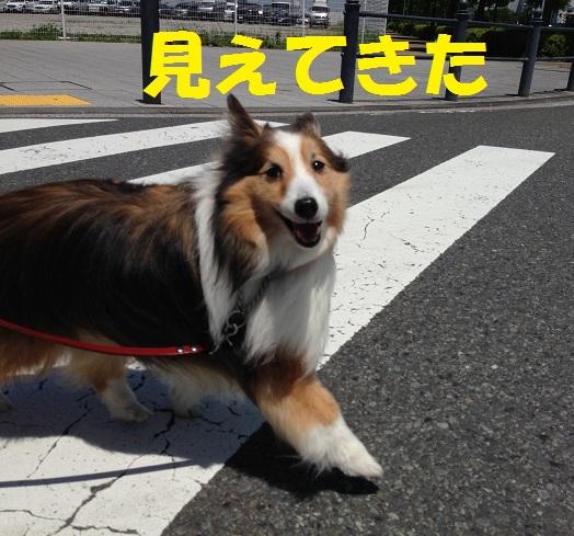 横浜開港祭り99