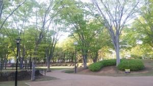 takezonopark01.jpg
