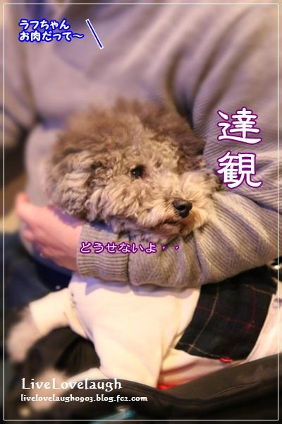 IMG_7971あぼ7
