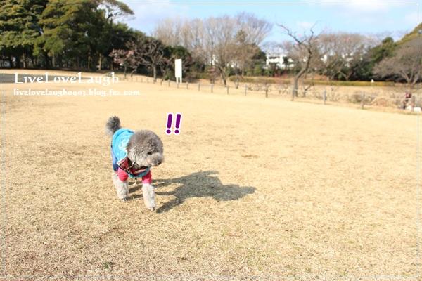 IMG_0910ねぎし4