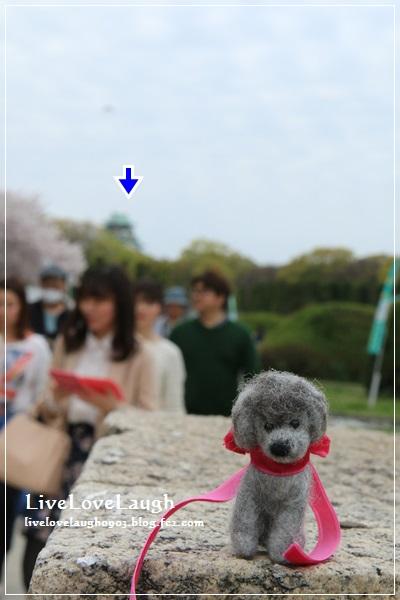 IMG_8601おおさか4