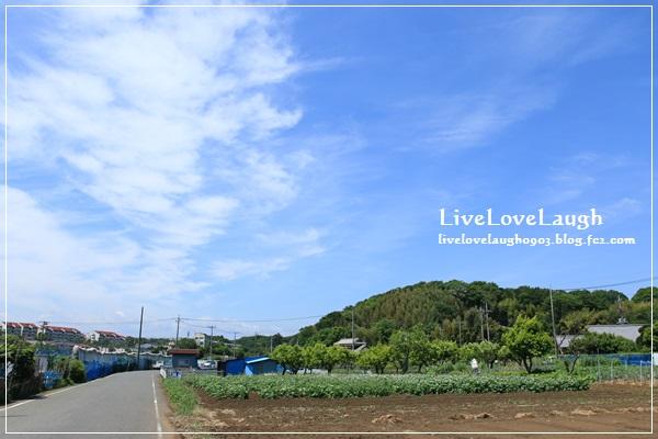 IMG_9758じけ1
