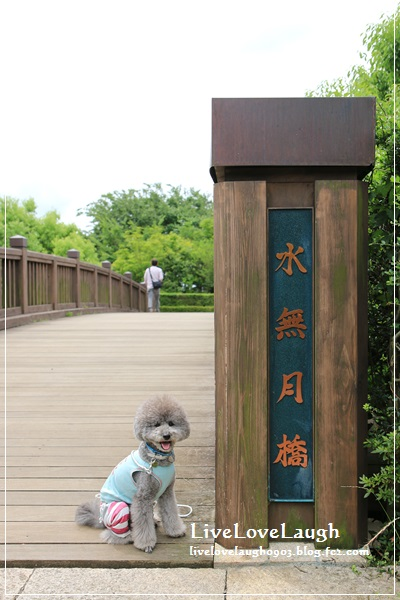 IMG_0811みなづき2
