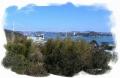 実家のある島(しまなみ海道)