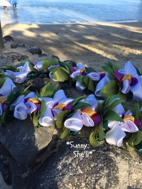 orchid lei saishuuasa2015