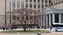中央教育棟