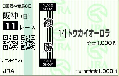 阪神11R複