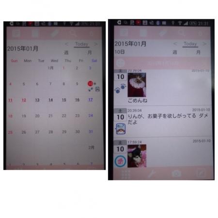 20150111132555a81.jpg