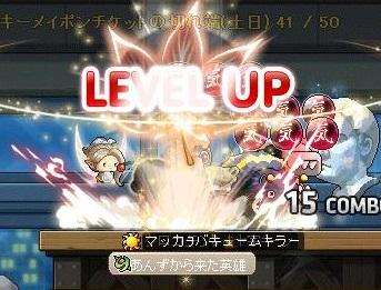 Maple12662a.jpg