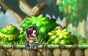 Maple12852a.jpg