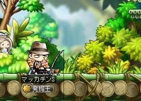 Maple12859a.jpg