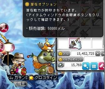 Maple12905a.jpg