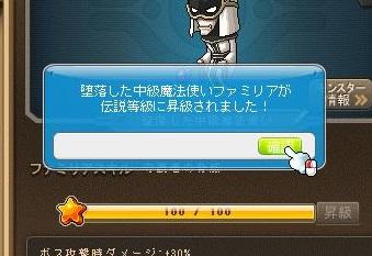 Maple12966a.jpg