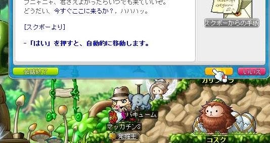 Maple12985a.jpg