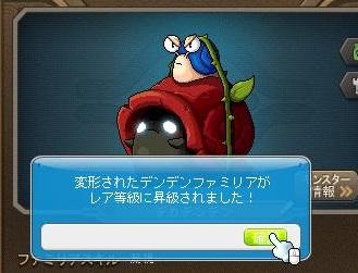 Maple12996a.jpg