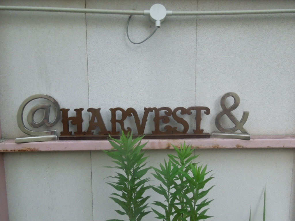 Typography タイポグラフィー雑貨 Harvest & @オブジェ