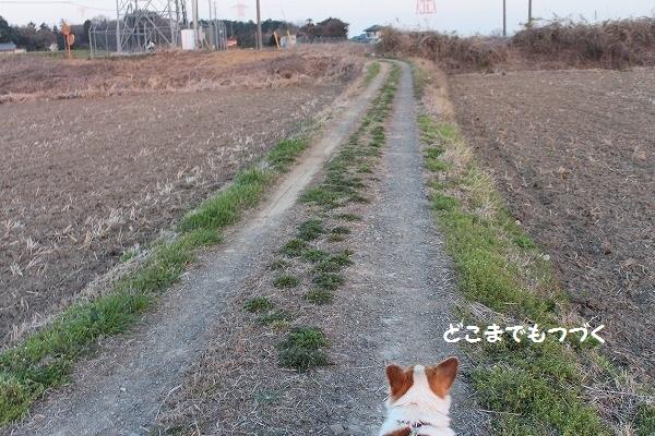 IMG_7979.jpg