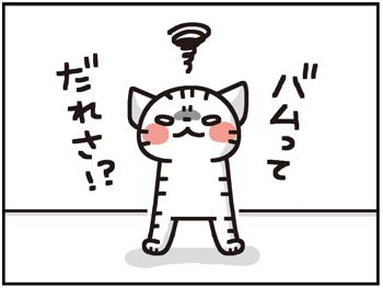 バムちゃん12