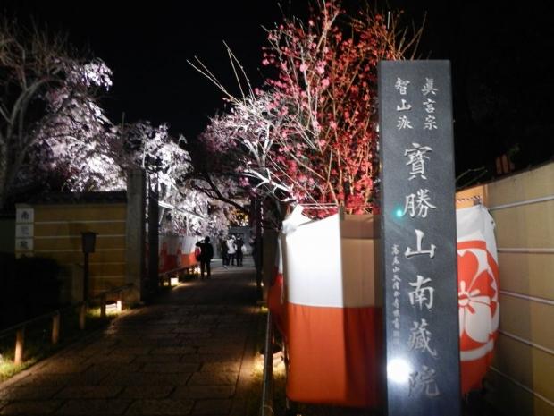 南蔵院夜景 (1)