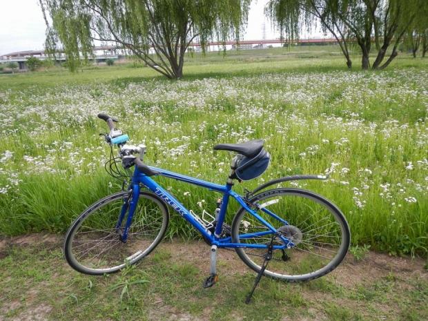 サイクリング5-4 (1)