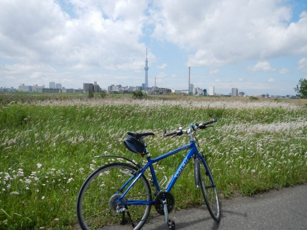 サイクリング5-4 (11)