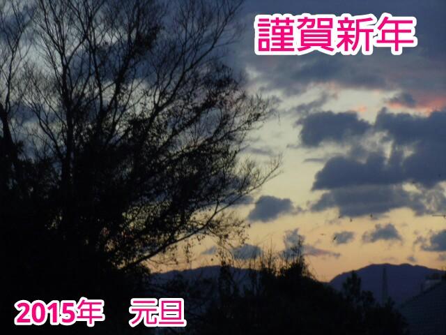 20150101120718bea.jpg