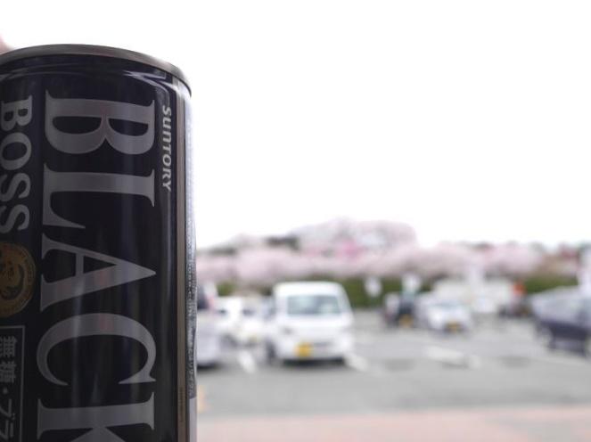 桜めぐりツー (33)