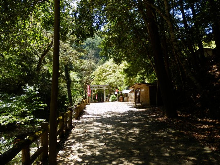 八塔寺、いこいの村林道 (21)